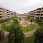 敷地内に公園並みの遊ぶスペースがあります。