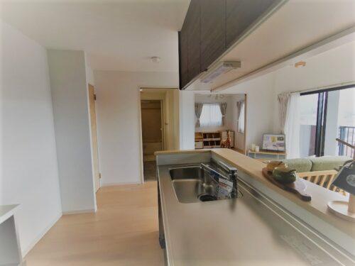 写真は棟内モデル住戸。キッチン・洗面台・浴室が直線の導線に配慮された造り