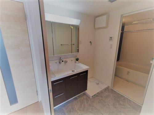 写真は棟内モデル住戸。洗面所